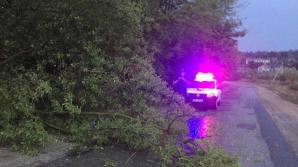 Furtuna din această seară a făcut RAVAGII în mai multe raioane ale ţării (FOTO/VIDEO)