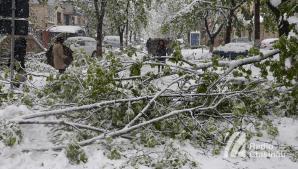 Filip: Toţi cei care au avut de suferit în urma calamităților naturale din primăvară vor primi ajutor de la stat