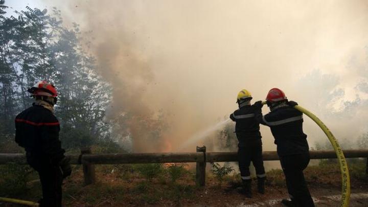 Incendii de pădure în toată lumea. 450 de pompieri au reușit să potolească flăcările în apropiere de orașul francez Nisa