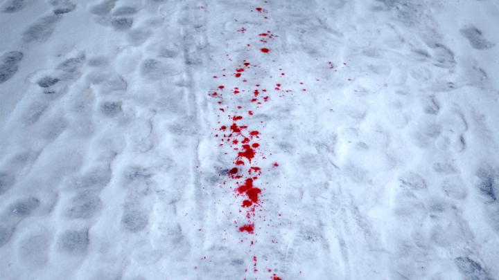 Deznodământul omorului din noaptea de Revelion! Ucigașii celor doi ciobani, și-au recunoscut vina