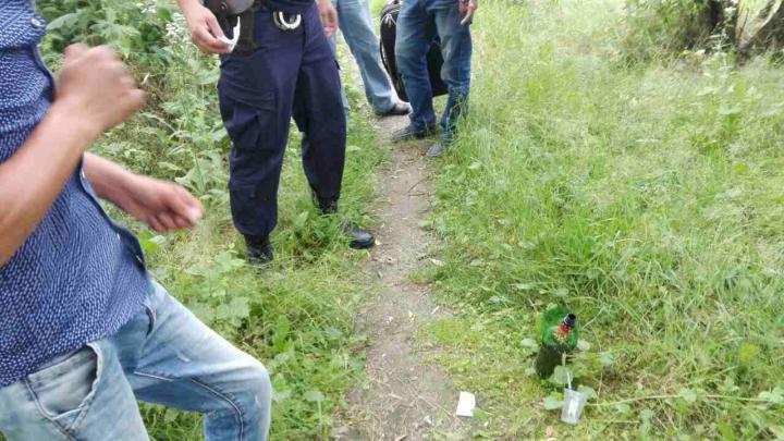 Trei moldoveni, prinși în timp ce consumau DROGURI (FOTO)