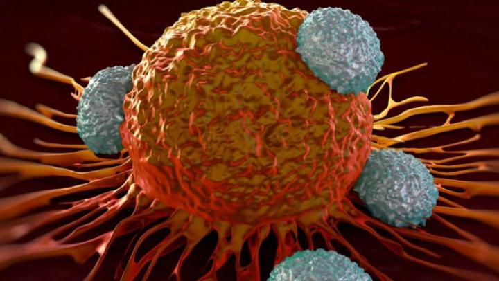 Medicii trag un semnal de alarmă: Lipsa acestei vitamine duce la apariţia cancerului