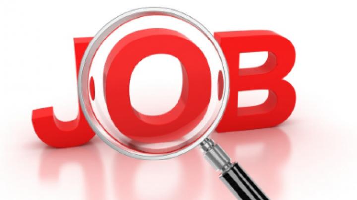 Vrei să mergi la muncă peste hotare? Iată care sunt cele mai căutate joburi în Marea Britanie