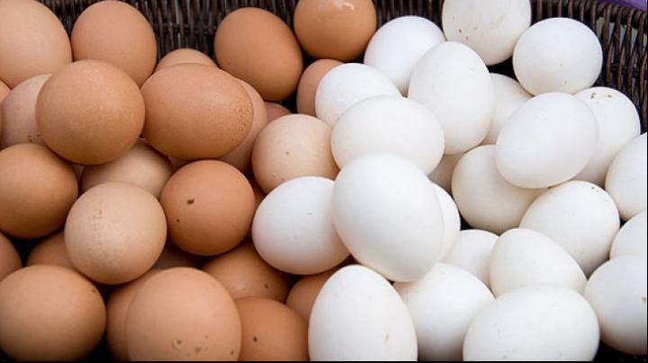 Dar tu știai? Care este adevărata diferență între ouăle albe și cele maro