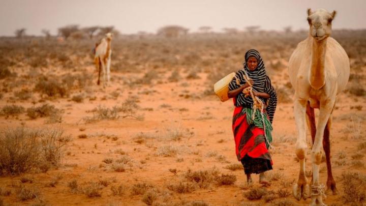 Somalia: Peste 700.000 de persoane s-au strămutat din cauza secetei severe
