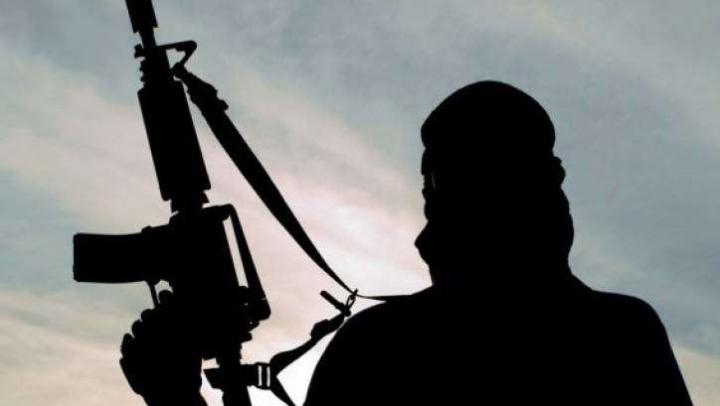 În Germania de la începutul anului au fost înregistrate 400 de anchete de terorism