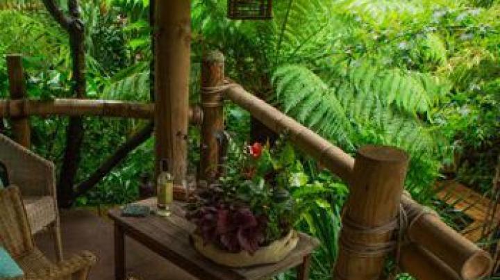 Un britanic și-a transformat grădina într-o poveste. A muncit 20 de ani la asta (FOTO)