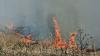 Incendiu de vegetație în zona Harghita-Mădăraș. Există riscul ca focul să se EXTINDĂ spre pădurea masivă din apropiere