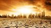 Raport: 2016, cel mai călduros an din istorie. S-au înregistrat temperaturi record la nivel mondial