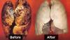 Îți curăță plămânii de nicotină: Orice fumător trebuie să consume acest aliment
