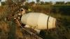Un bărbat şi-a pierdut viaţa, după ce betoniera pe care o conducea s-a izbit într-un copac (FOTO)