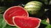 ATENȚIE! Crește riscul de INTOXICAȚII și ALERGII la fructele de sezon. Zeci de oameni au ajuns la spital în stare gravă