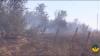 Rebelii din estul Ucrainei folosesc muniții cu încărcătură inflamabilă pentru a incendia terenuri și păduri