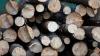 Moldovenii se pregătesc pentru iarnă: Cei care au procurat lemne mai devreme le-au despicat şi le-au aranjat în depozit