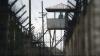 Deținuții din Penitenciarul Nr.3 din Leova își ispășesc pedeapsa în câmp. Cu câți bani sunt remunerați aceștia