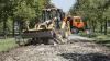Locuitorii sectorului Ciocana se vor bucura de o alee renovată la sfârşitul lunii septembrie (FOTOREPORT)