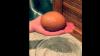 Găina sa făcuse un ou imens. Când l-a spart, uimirea a fost și mai mare (FOTO/VIDEO)