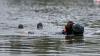 Trei bărbaţi şi-au pierdut viaţa după ce au decis să se răcorească în apa Nistrului