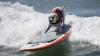 Zeci de patrupezi au partcipat la un turneu de surfing în California