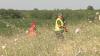 A fost dat STARTUL sezonului de vânătoare la porumbei, prepeliţe şi vulpi