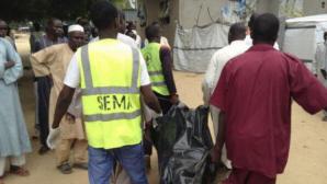 31 de pescari au fost omorâţi pe malul lacului Ciad de gruparea jihadistă Boko Haram