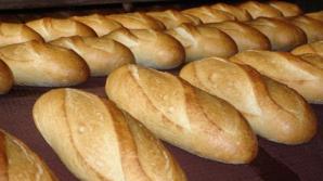 Chiar dacă recolta de grâu este mai mare, prețul pâinii va rămâne neschimbat