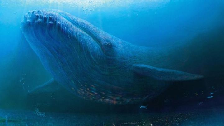 Cel mai puternic animal de pe Pământ în pericol din cauza schimbărilor climatice