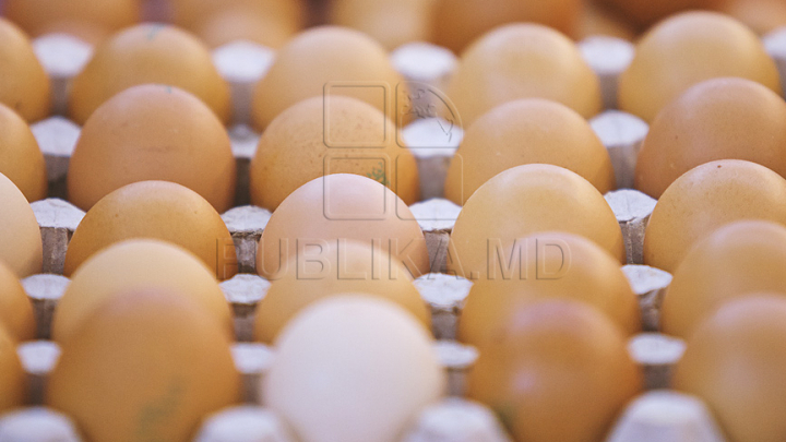 Scandalul cu ouă contaminate din Olanda stimulează statele europene să-și promoveze producția internă