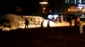 Accident aviatic: Un avion de mici dimensiuni s-a prăbușit și a luat foc (VIDEO)