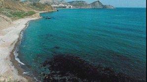 Studiu! Marea Neagră, cea mai poluată din Europa