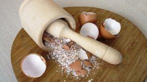 Efectul MINUNE al coajei de ou. Evită să o mai arunci