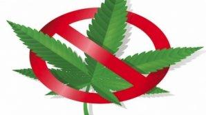 Peste 22 de persoane au fost arestate pentru traficul ilicit de droguri. Vinovaţii riscă ani grei de închisoare