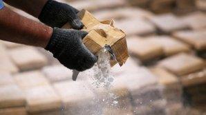 Percheziții de amploare împotriva mafiei în nordul Italiei: 24 de persoane au fost reținute pentru trafic de droguri