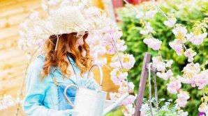 HOROSCOP: Ce floare te reprezintă și ce spune despre tine în funcție de zodia pe care o ai