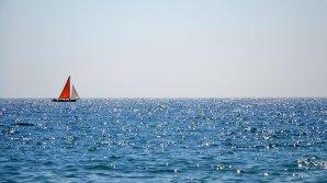 """""""Nu am mai văzut așa ceva până acum!"""" Descoperire uluitoare pe fundul Mării Negre (VIDEO)"""