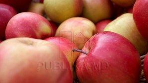Peste 20 de tone de mere din Moldova au fost interzise în Federaţia Rusă