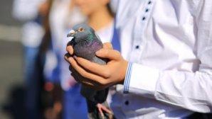 Ziua Internaţională a Păcii! Veteranii de război i-au omagiat pe foştii camarazi, iar copiii au lansat spre cer porumbei