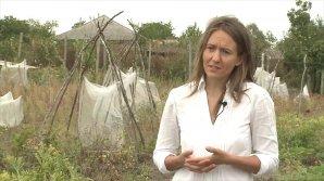 Grădina exotică la Cigârleni! O tânără creşte fructe şi legume aduse din toate colţurile lumii