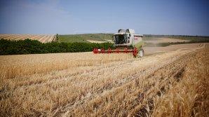 IFC va oferi Moldovei 3,2 milioane de dolari pentru îmbunătățirea climatului de afaceri în industria agricolă