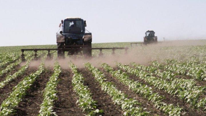 Tehnologii noi în agricultură. Terenuri agricole supravegheate şi chiar stropite cu ajutorul dronelor şi aparatelor speciale