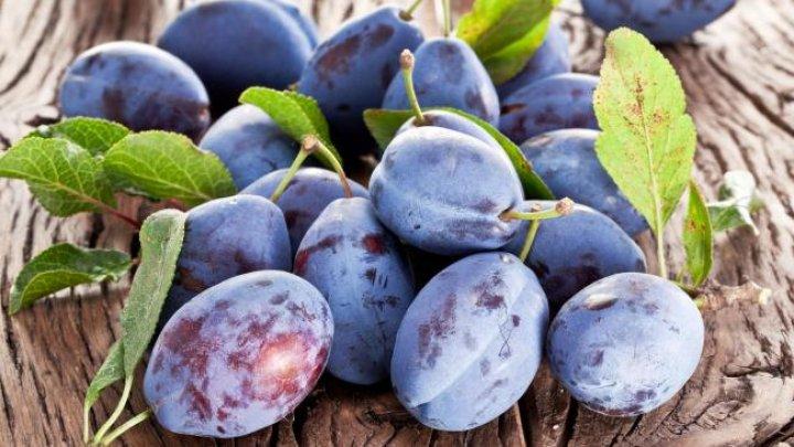 Peste 20 de tone de prune din Moldova au fost interzise în Federaţia Rusă