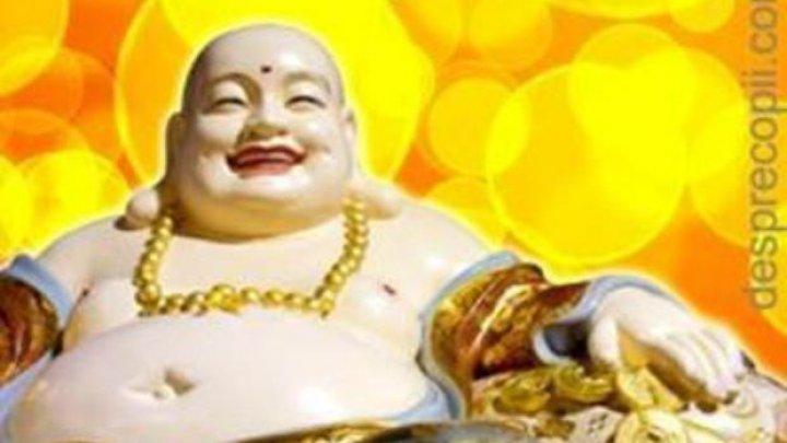 Zece sfaturi de FENG SHUI ca sa aduci fericire si armonie in casa ta