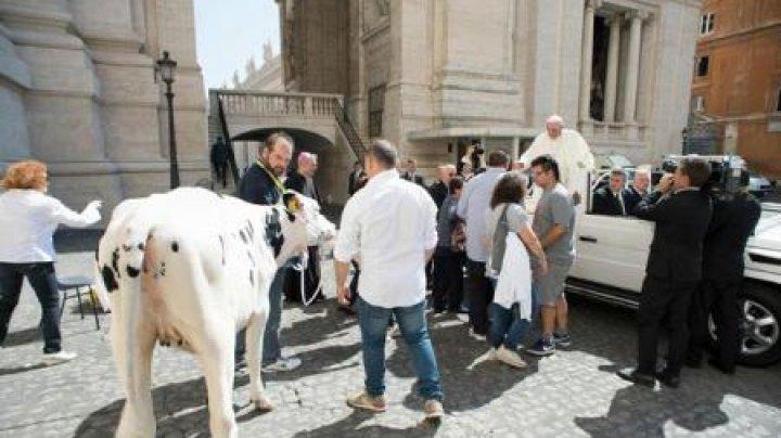 Papa Francisc a primit un cadou total neobişnuit. Ce va decide să facă pontiful cu acest dar (FOTO)