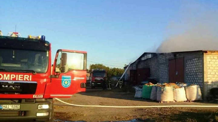 Incendiu la Orhei! Un depozit de paie şi rumeguş a luat foc (FOTO/VIDEO)