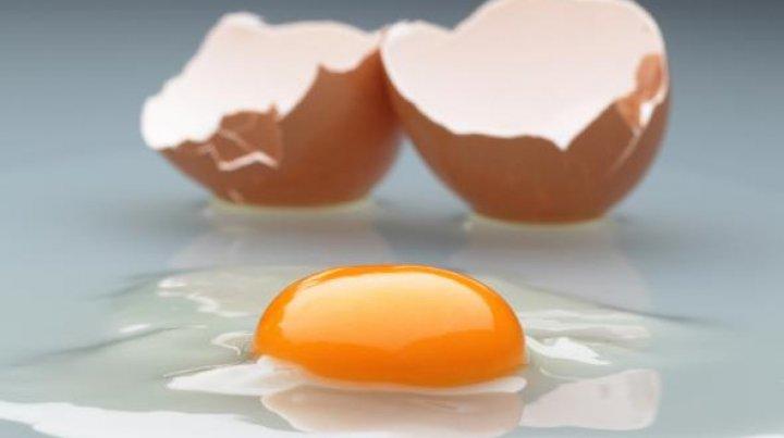 Raport: 40 de țări au fost afectate de scandalul ouălor contaminate cu fipronil