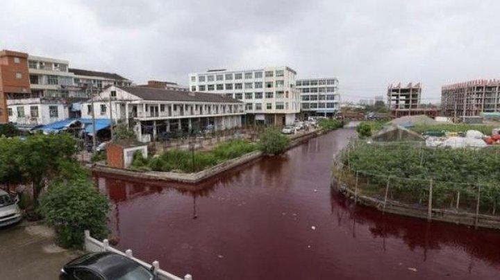 Râu de sânge într-un oraș din China. Ce ar fi provocat acest DEZASTRU ECOLOGIC (VIDEO)