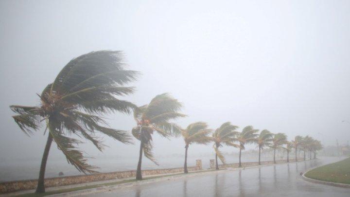 Sume uriaşe! Cât va costa economia SUA uraganul Irma
