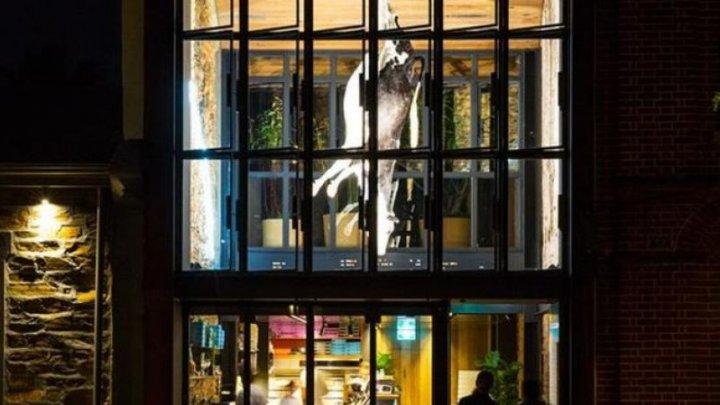 DEZGUSTĂTOR! O vacă a fost spânzurată într-un restaurant pentru a susține un punct de vedere