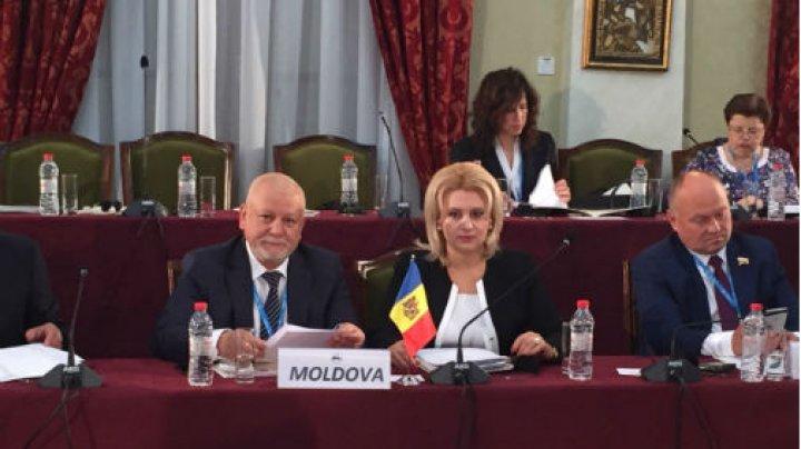 Delegația Parlamentului participă la Reuniunea Comisiei pentru afaceri economice, comerciale, tehnologice și de mediu a APCEMN