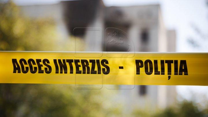 TRAGEDIE în cartierul Telecentru: Un bărbat a murit după ce a căzut din copac în timp ce culegea nuci
